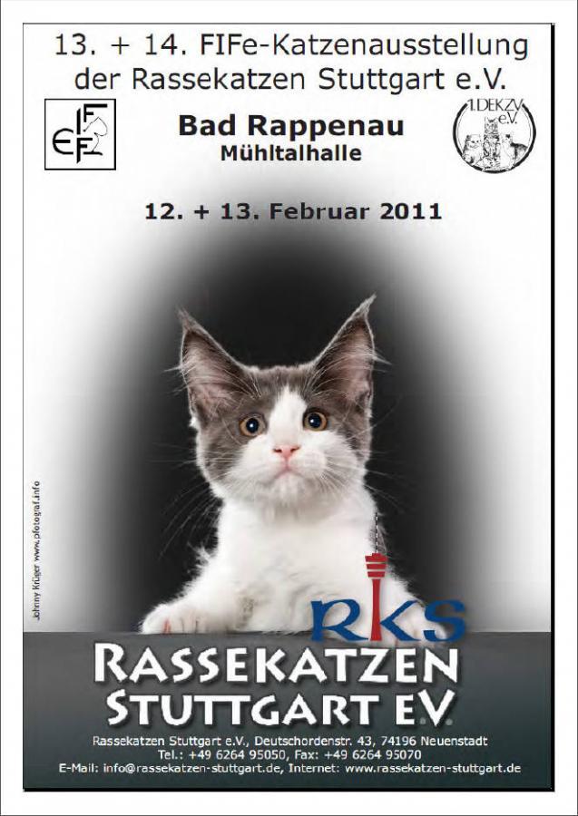 Katalog von Bad Rappenau