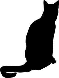 Chartreux 6901
